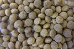 Silkworm Bits (met 35% zijderups